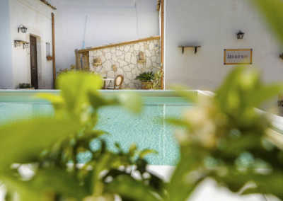 B&B Avola bed and breakfast Morfeo val di Noto b&B Siracusa hotel sul mare b&b dormire avola vacanze sicilia marzamemi b&b b&b avola centro con piscina resort avola centro benessere_59