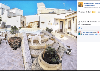 Morfeo vacanza animali sicilia
