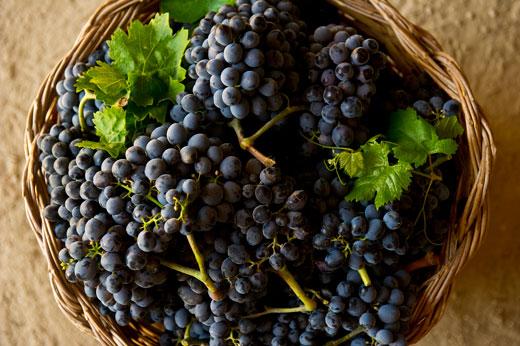 Nero d'avola b&B Avola vino