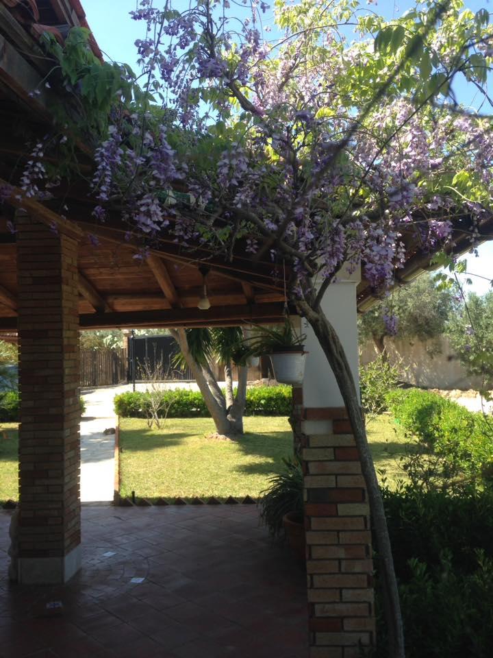 Il_Mandorleto_Val_di_noto_resort_avola_siracusa_b&b_Noto_villa_con_piscina_10